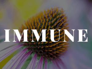 Immune Formulas